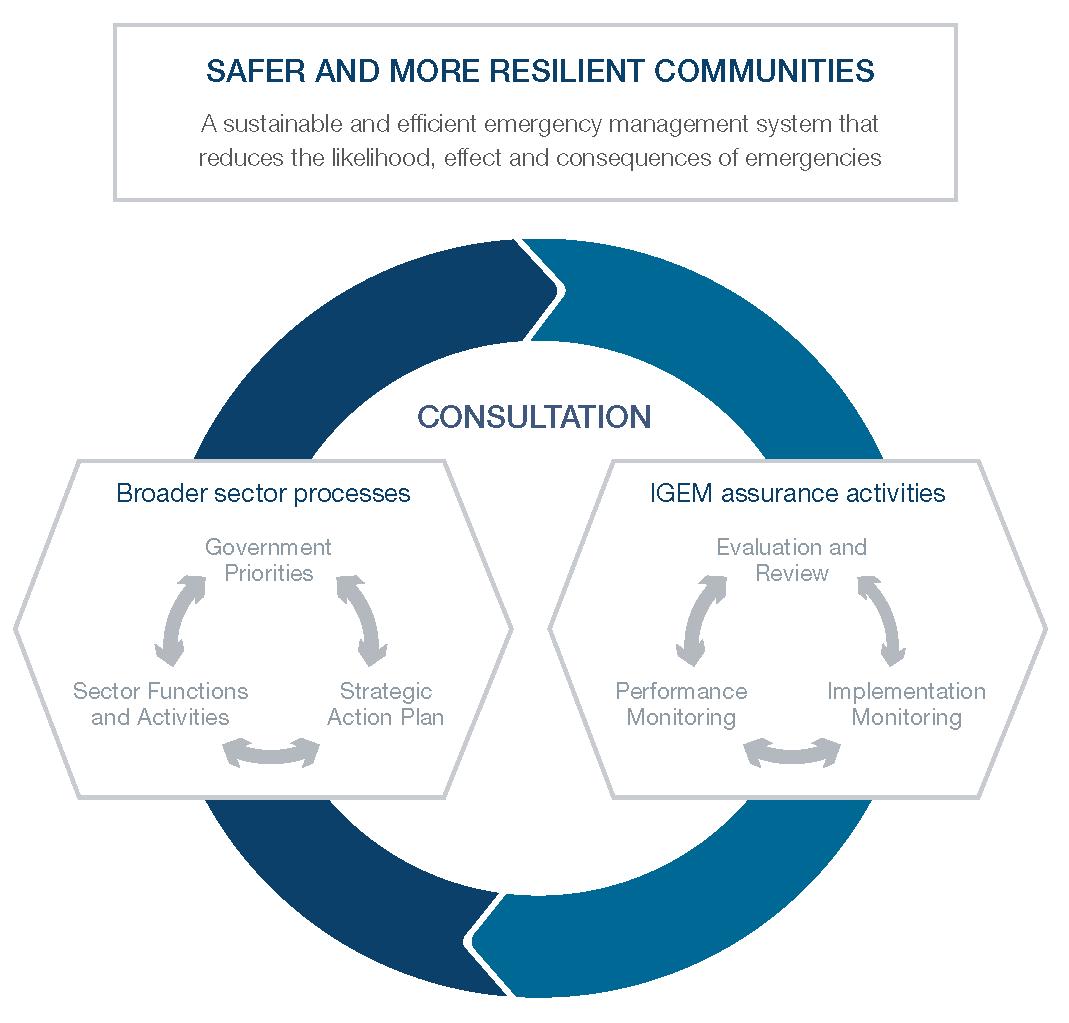 Relationship between broader sector processes and IGEM assurance activities