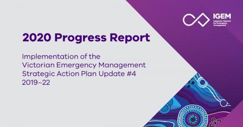 IGEM's 2020 SAP Progress Report released